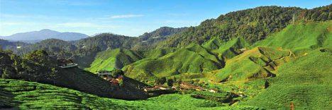 Malaysia Reiseidee Cameron Highlands © Malaysia Tourism Promotion Board