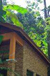 Malaysia Reiseidee Taman Negara © Malaysia Tourism Promotion Board