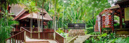 Hotel Mutiara Taman Negara Resort © Mutiara Taman Negara